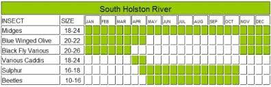 South Holston Hatch Chart