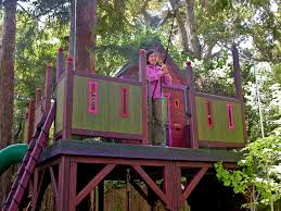 Interesting Kids Tree Houses With Zip Line Barbara Butlerextraordinary Play Structures For Kidsmajestic Treehouse Majestic Throughout Simple Design