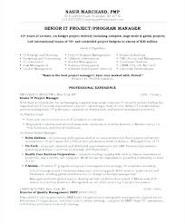 Director Resume Template Theatrical Director Resume Finance Manager ...