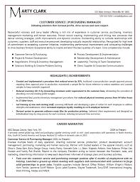 Example Of Resume Headline Help With Resume Headline Lou Knierim Resume
