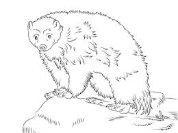 Small Picture Cute Wolverine coloring page Free Printable Coloring Pages