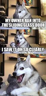 ran into the sliding glass door i saw it bad pun dog meme imgflip