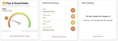 Time To Buy The Dip Fear Greed Index Shows Extreme Fear