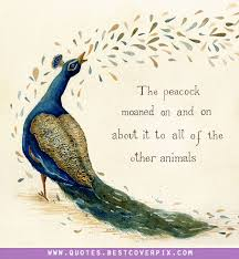 Peacock Beauty Quotes