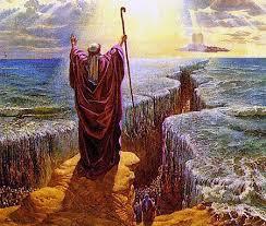 L'Eglise, nouvel Israel de Dieu ... ou pas ? Images?q=tbn:ANd9GcRtps-Uw0_ntXwQFjjjsf5_d6mx-NFsKQ2CUyWpIbNUVNpvfMTYpA