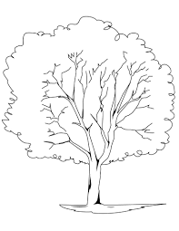 Apple Tree Coloring Page For The Kids Pinterest With - diaet.me