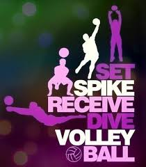 Volleyball Quotes Custom Volleyball Quotes QUOTES