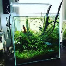 aquarium garden. Modren Aquarium ADA Cube Garden 30C Aquarium Ultra High Clarity Glass Intended A
