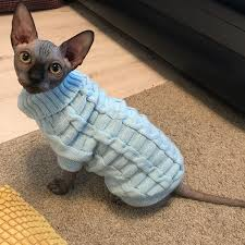 Leisure Pet Cat Sweater Winter <b>Warm Cotton Cat</b> Clothes for Small ...
