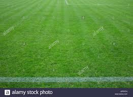 green grass football field. Football Field With Green Grass And Horizontal White Line C