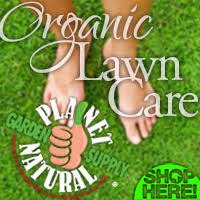 lawncare ad organic lawn care 101 maintaining a chemical free lawn planet