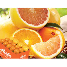 it seems everyone now knows we have the freshest and best tasting florida citrus fruit honeybells gfruits in florida s