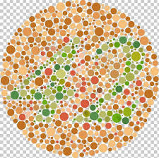 Color Blindness Ishihara Test Visual Perception Color Vision