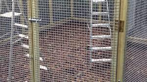 Pheasant Cage Designs New Pheasant Aviary