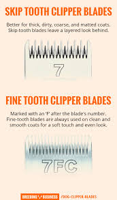 Buying Dog Clipper Blades All The Different Blades For Dog