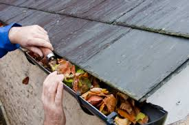 Image result for dirty gutters on the roof images
