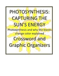 cause and effect visual photosynthesis leaves change color rdg crossword cause effect