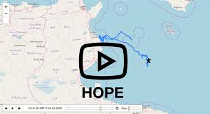 The Lampedusa Clinic Italy 2016 Marine Biology Projects