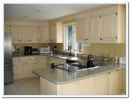 romantic paint colors for kitchens cabinets kitchen cabinet ideas pictures home design and remodeling