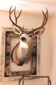 love the rustic fram around the deer
