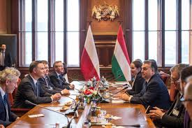 Image result for Photo of Polish Cabinet with President Duda