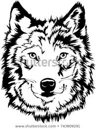 wolf face black and white. Simple White Black U0026 White Wolf Face Silhouette Mascot Or Tattoo Art For And E