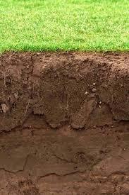 peat moss garden soil what is garden soil garden soil mix vegetable garden soil peat moss canada