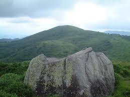 「道後山 登山」の画像検索結果