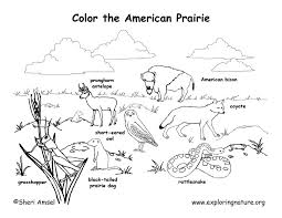 Small Picture animal habitat coloring pages Google Search 1st Grade Art