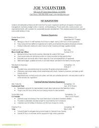 Simple Business Case Templates Simple Business Case Template Lovely Plan Software Upgrade Example