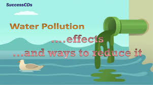 Types Of Water Pollution Chart Water Pollution Effects And The Ways To Reduce It
