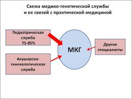 Виды облигаций реферат курсовая работа диплом Скачать  Эффективность медико генетических консультаций реферат