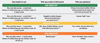 Northern Pike Age Chart Give In To Fish Fervor Wisconsin Natural Resources
