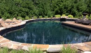 natural looking in ground pools. Natural Swimming Pool Designs Lovely Contemporary Looking In Ground Pools