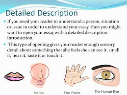 how to develop a hook for essay writing ppt video online  detailed description