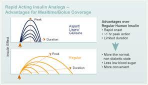 Human Insulin Diabetes Education Online