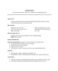 Professional Resume Template 2013 Enchanting Professional Resume Templates Design Resume Templates Creative