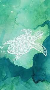 Cute Turtle iPhone Wallpapers - Top ...