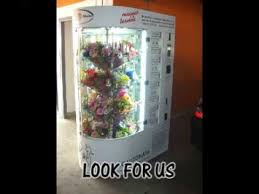 Floral Vending Machine Unique Flower Vending Machine YouTube