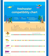 Community Fish Compatibility Chart New December 2017 Page