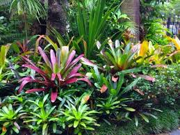 Small Picture Landscaping Photo Gallery