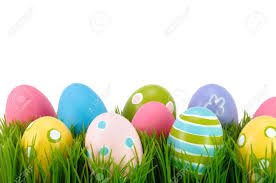 Image result for colored egg