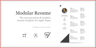 Fresh Apple Cv Template Type Of Resume