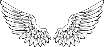 Download Angel Halo Wings Png Free Download Free Transparent Png