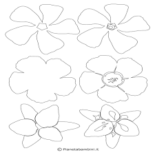 Disegni Di Fiori Di Pesco Da Colorare Hibiscus