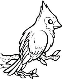 Cardinal Coloring Page Printable Coloring Pages Cardinal Coloring