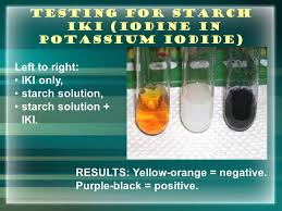 Iki Solution Aice Biology Lab Review Biological Molecules Enzymes Ppt Video