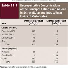 Icf Chart Chemistry Ion Concentration In Ecf And Icf Google Search