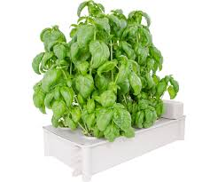 grow systems hydroponic systems