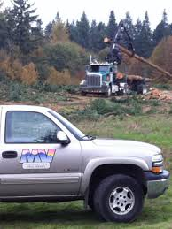 mountain view tree service mountain view tree service s24